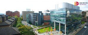 Công ty tư vấn du học tại Huế - DDC Education Địa chỉ: 02 Hồ Tùng Mậu, TP.Huế. Điện thoại: 0234.38126 267 - 01234.369.246 https://www.facebook.com/DDC.Education